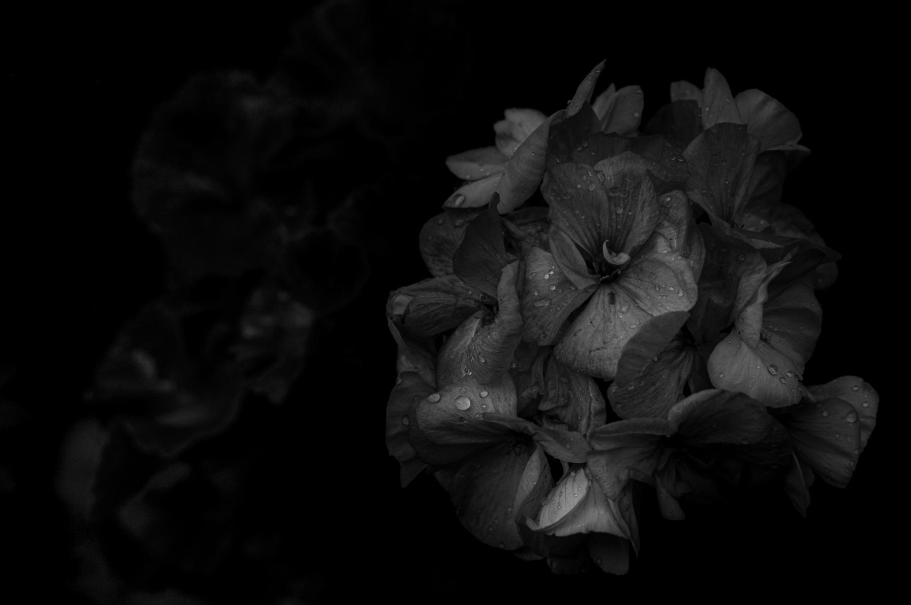 untitled-0618