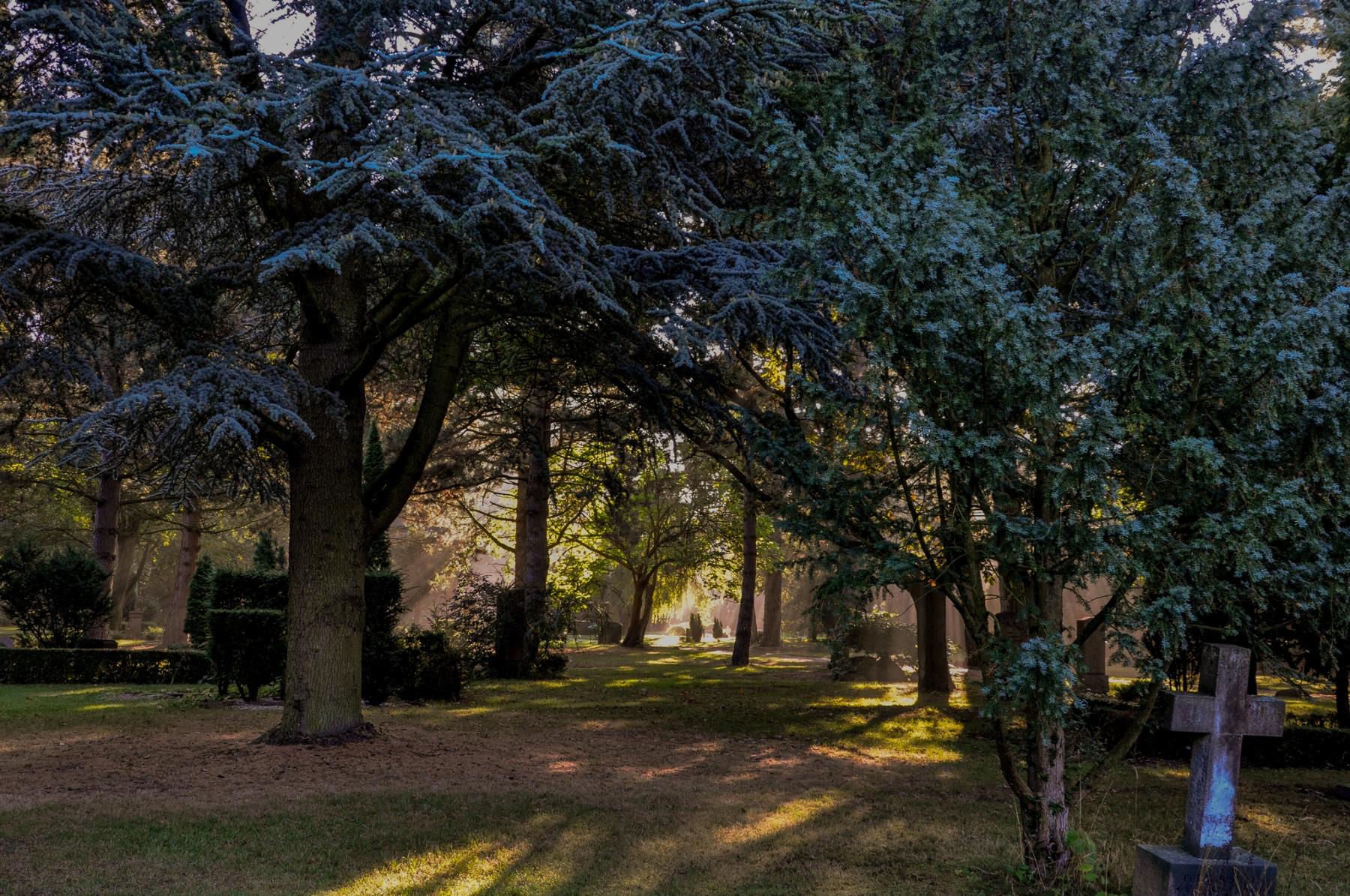 anja-blaksmark-vestre-kirkegård-kors